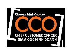 Giám đốc Kinh doanh / Chief Customer Office
